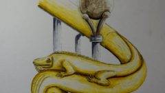 Leguan-Handlauf im Senckenberg-Museum